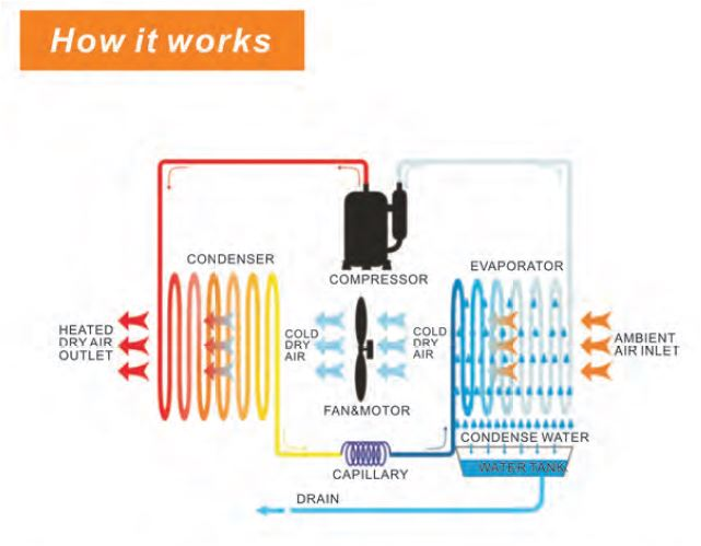 Refrigerant Dehumidifiers Alto Pool Dehumidifiers Air